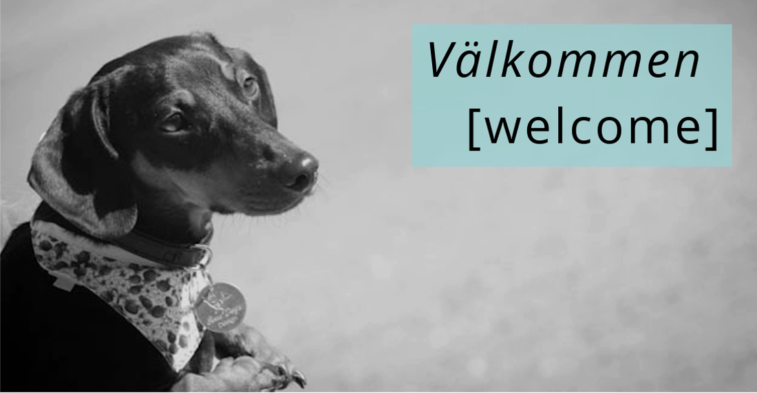 Valkommen welcome